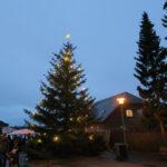 Så kom der lys i træet
