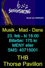 Seniorswing_stander